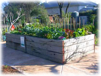 Fern Avenue Raised Garden Beds