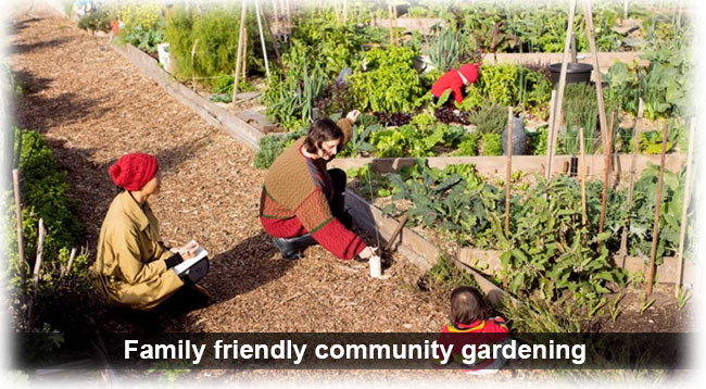 Rushall Garden is a family friendly community garden