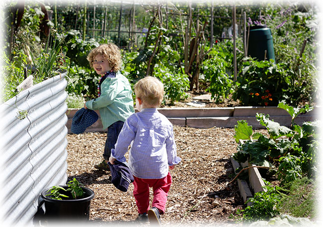 Rushall Gardens family friendly community garden