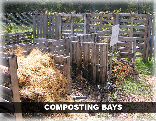 coffs community garden composting bays