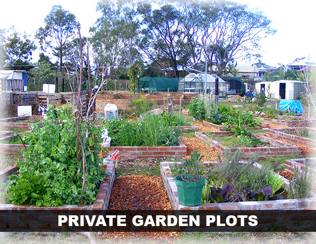 coffs community garden private garden plots