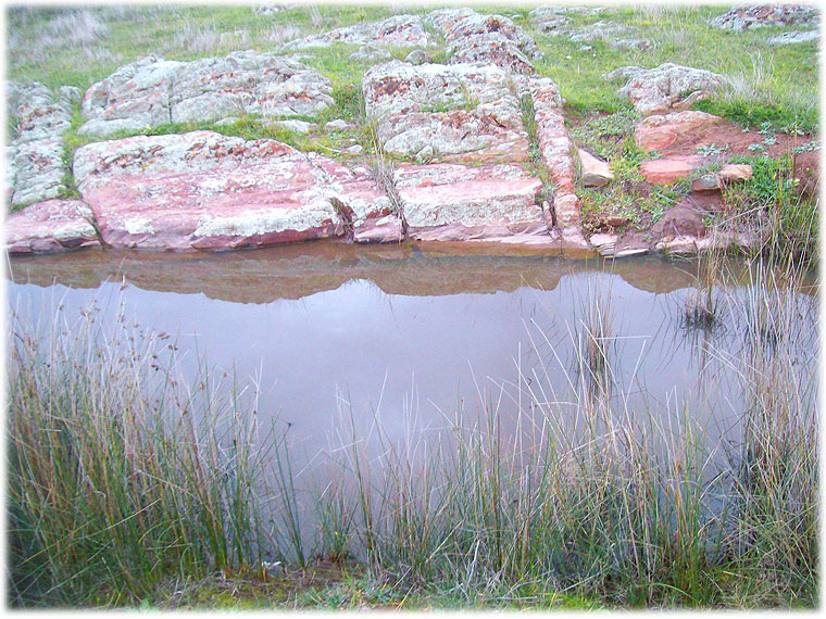 Rock Terraces on the creek, Flinders Ranges