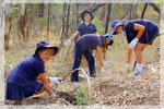 Children Nurture Nature at Littlehampton, South Australia