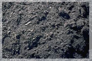 Creating Compost:  Returning Life to The Soil